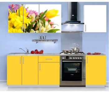 Кухонный гарнитур с фотопечатью эконом Аника 14 (1,5 м)