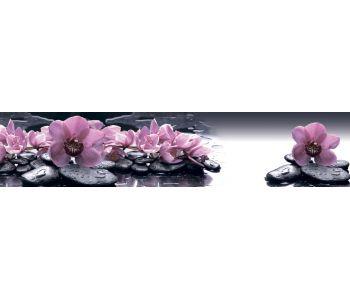 Стеновая панель (высокоглянцевая) Msk Орхидеи на камнях