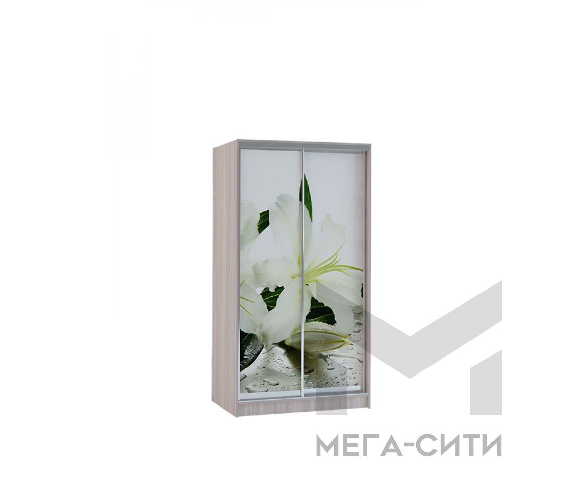 Шкаф купе Vivat 1,2 shimo svet lilii copy