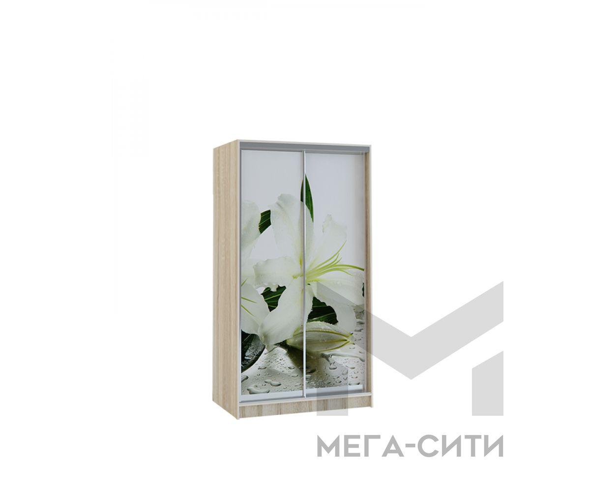 Шкаф купе Vivat 1,2 sonoma lilii copy