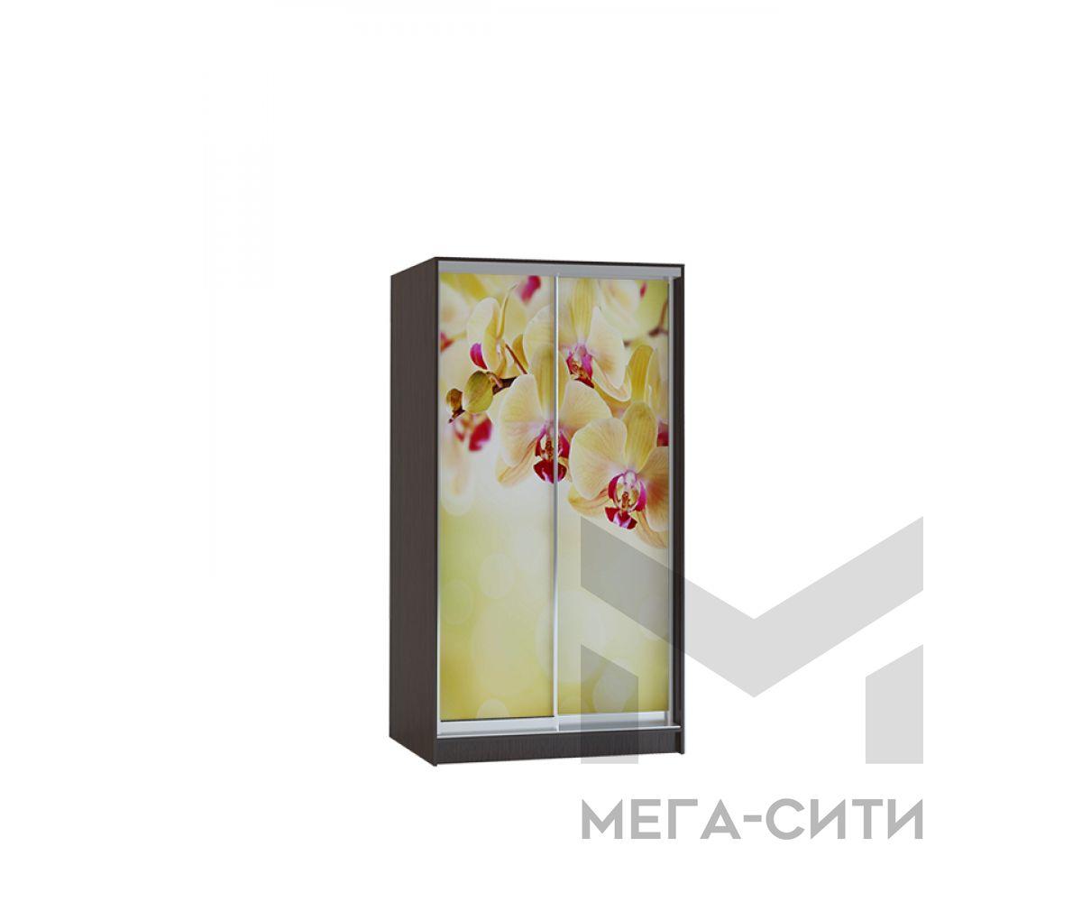 Шкаф купе Vivat 1,2 venge orchid copy