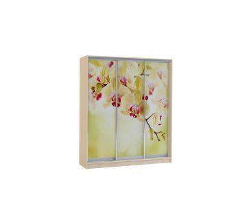 Шкаф купе Vivat 1,77 kremona orchid copy