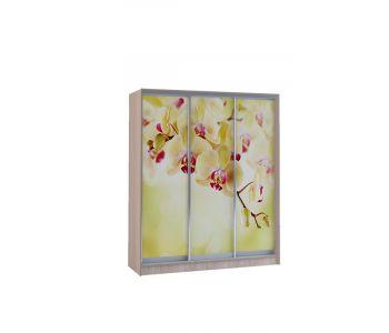 Шкаф купе Vivat 1,77 shimo svet orchid copy