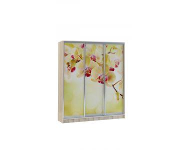 Шкаф купе Vivat 1,77 sonoma orchid copy