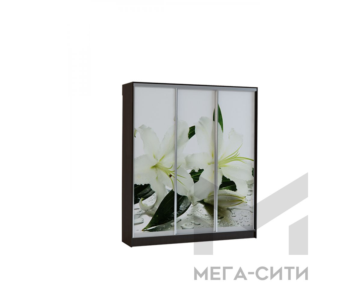 Шкаф купе Vivat 1,77 venge lilii copy