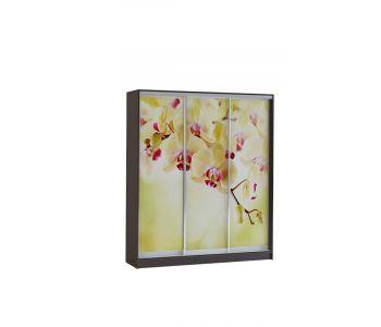 Шкаф купе Vivat 1,77 venge orchid copy